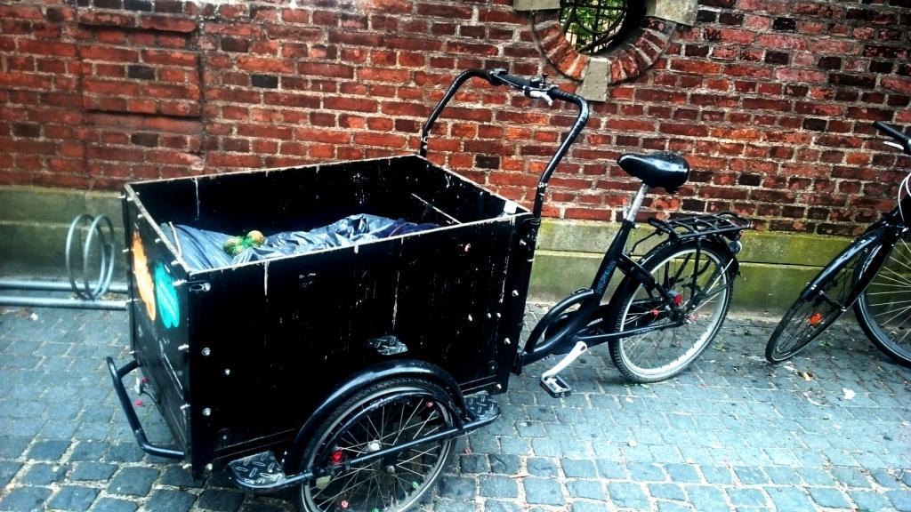 ...Keď bohatí jazdia na bicykli. O dánskej demokracii, imigrantoch, dôvere a odpade